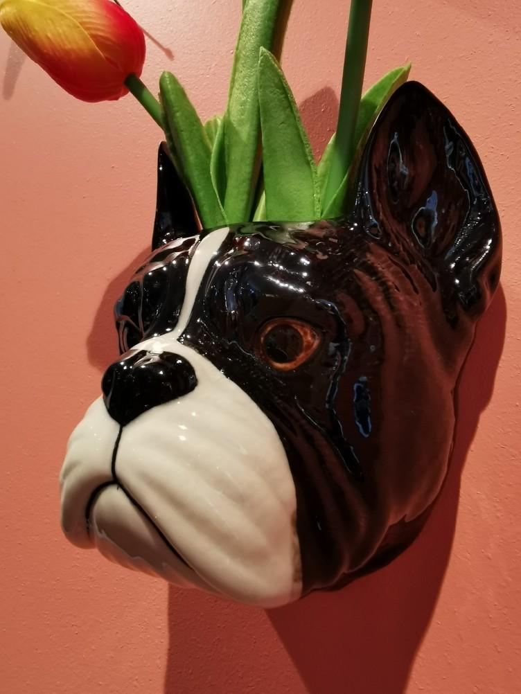 Veggvase Liten Fransk Bulldog