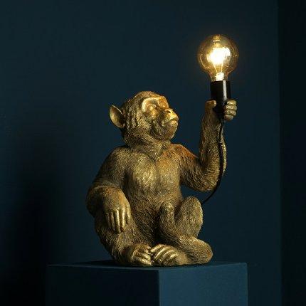 Abu Lampe