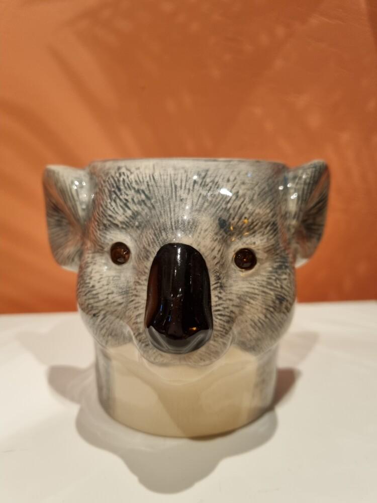 Pennekopp Koala